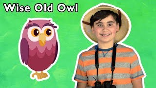 Wise Old Owl + More | Mother Goose Club Playhouse Songs & Rhymes