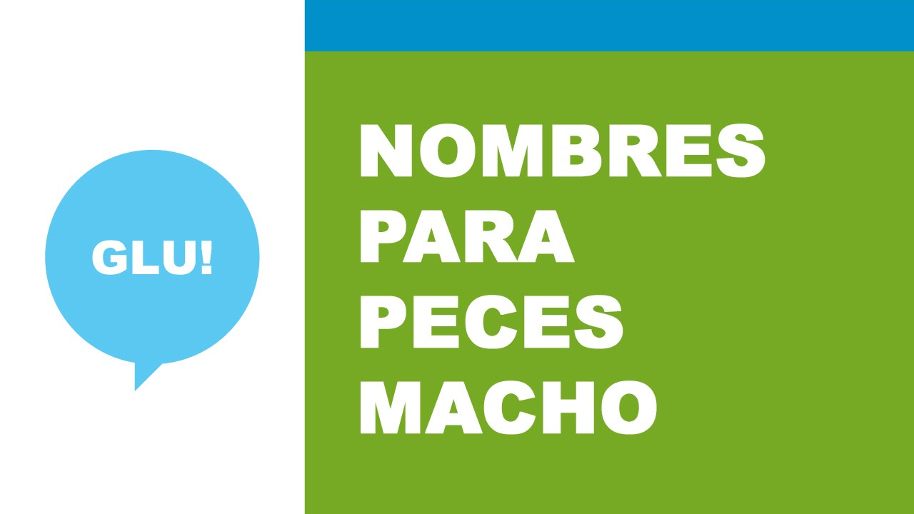 956c158082 Nombres para peces machos - YouTube