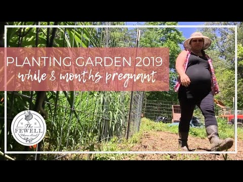 planting-kitchen-garden-2019