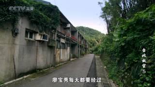 [CCTV高清频道] 台北故宫-故宫国宝在台北 第5集 瓷中繁花 thumbnail