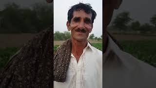 Chak 623Gb Tandlianwala faisalabad......gup shup with muneer hussain