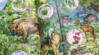 Атлас Природознавство. 3-4 класс 1610