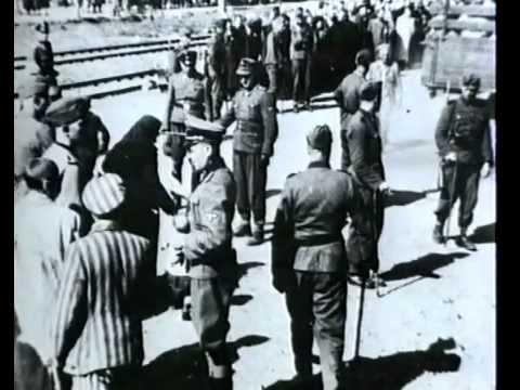 Auschwitz - Erinnerungen des häftlings nummer 1327 /Dokumentarfilm/ Konzentrationslager