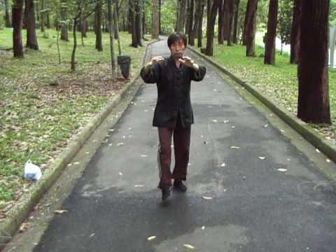 Tradicional - QiGong, Yi Quan - Demonstração Andar Mestre Cai WenYu