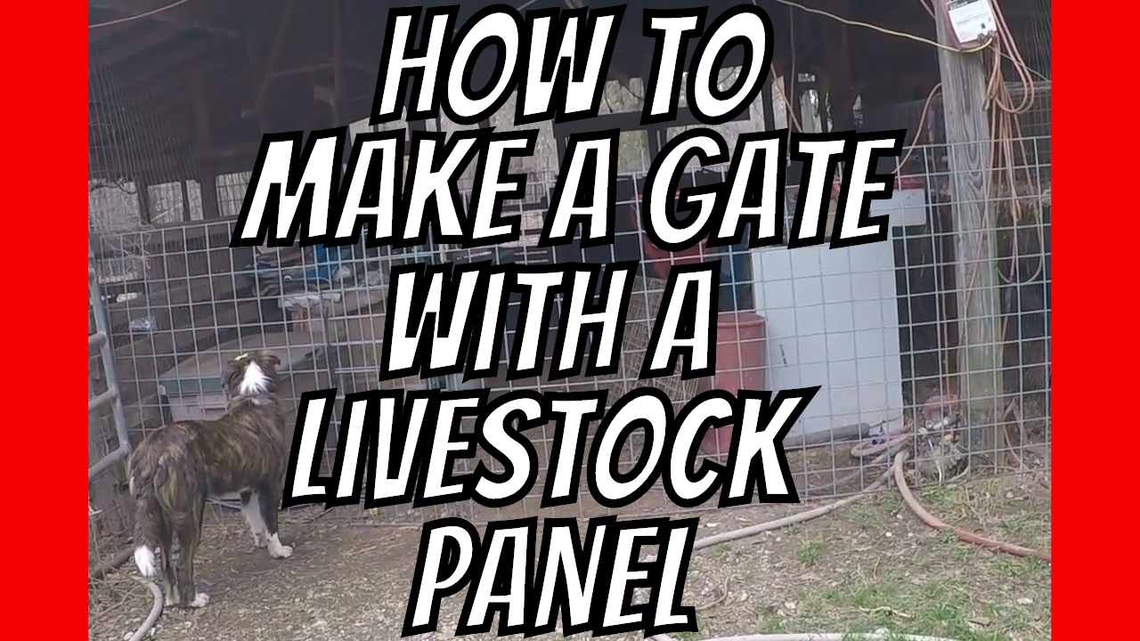 AldermanFarms Quick Tip | How to Make a Gate with a Cattle Panel ...