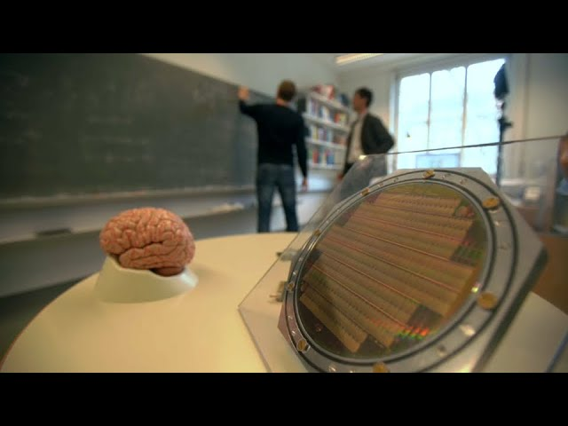 The Human Brain Project: Slicing brains and thinking
