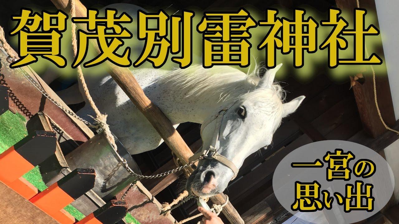 京都・賀茂別雷神社(かもわけいかづち)の思い出!全国一宮参拝|黒猫魔術店
