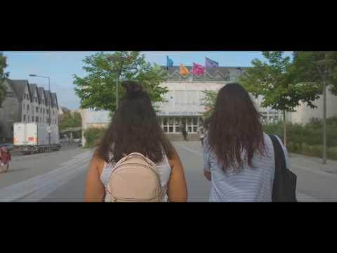 Université de Tours - 2017