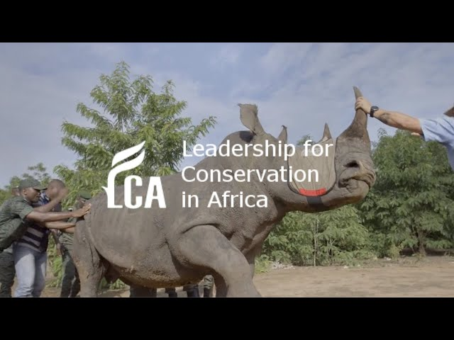 Rhino translocation in Cote d'Ivoire