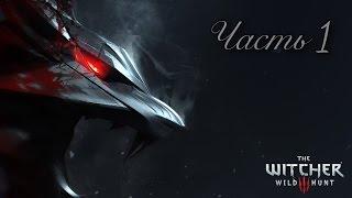 Прохождение Ведьмак 3 Дикая охота Witcher 3 Wild hunt Новая игра + часть 1