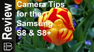 8 Easy tips that will improve your pictures on the Samsung S8 & S8+
