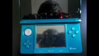 Bug Nintendo 3DS