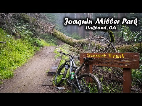 All of the Best DH (mtb) Trails at Joaquin Miller Park!