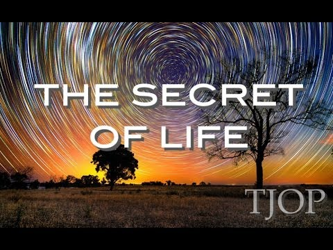 The Secret of Life - Alan Watts