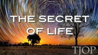 The Secret of Life  Alan Watts