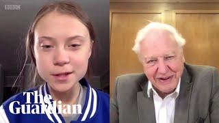 'It's nice to meet you': Greta Thunberg and David Attenborough speak over Skype