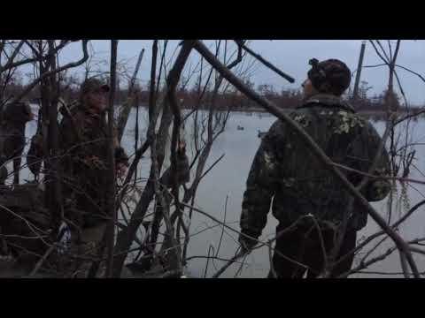 Arkansas Duck Hunt 2017