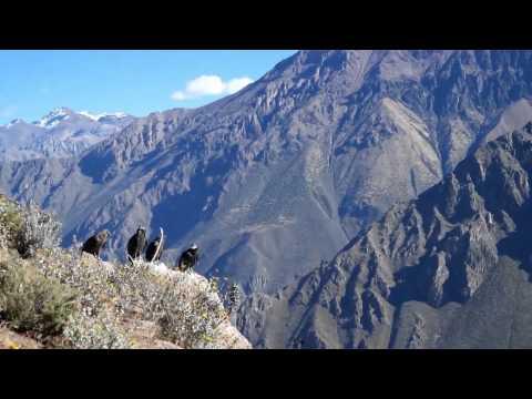 Altiplano - Bolivia and Peru