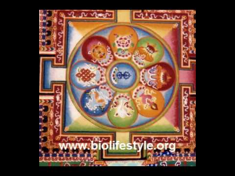 Radionic Sound Visual Therapy by www.biolifestyle.org