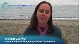 Southern California Gets Marine Protected Areas!