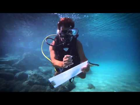 Life Insurance for Scuba Divers
