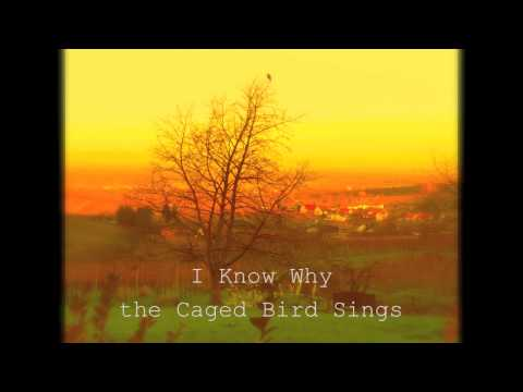 I Know Why The Cage Bird Sings Book Summary