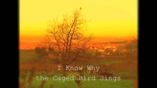 I Know Why the Caged Bird Sings (song)