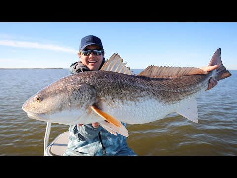 The Hunt For A Bull - Fly Fishing For Louisiana Redfish