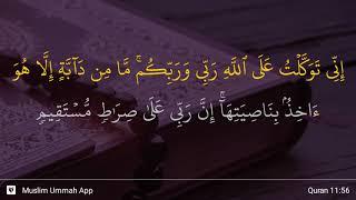Qs 1156 Surah 11 Ayat 56 Qs Hud Tafsir Alquran
