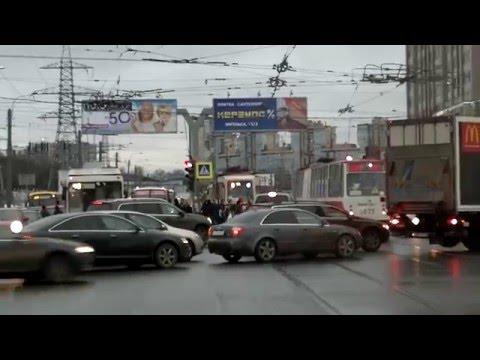 Олени на площади метро Пионерская и несчастный трамвай