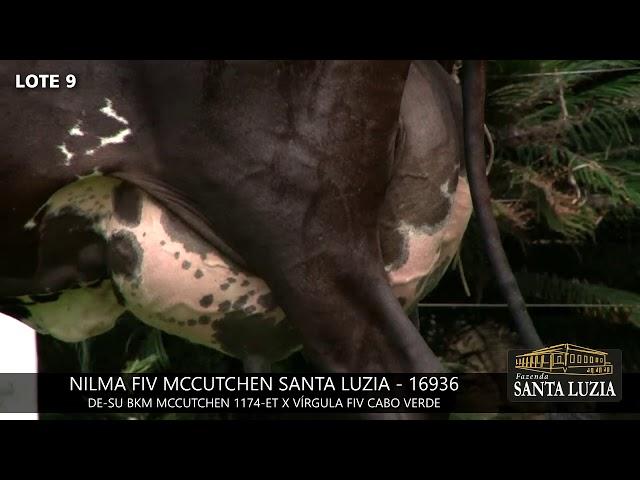 SANTA LUZIA   LOTE 9