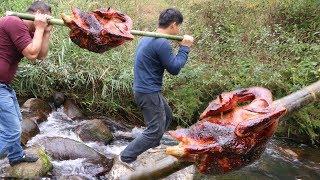老仙味食:烤大公鸡第一次见,这才是真正烤鸡 Roasting the big cock for the first time, this is the real roast chicken