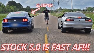 2019 Mustang 5.0 RACES Camaro and THIS HAPPENS!!!!