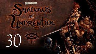 Neverwinter Nights: Shadows of Undrentide - 30 - The Blackguard