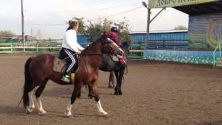 София. В первый раз на лошади.