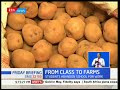 Students abandon school to seek employment in farms