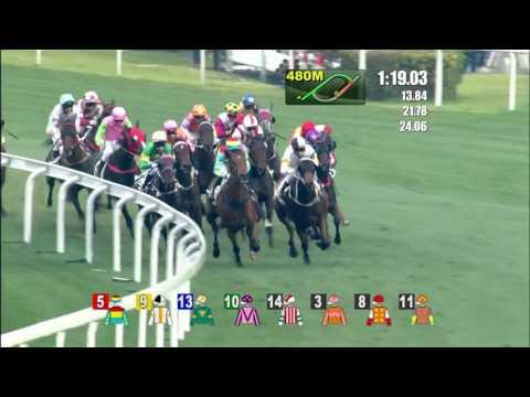 The Magic Man's Day Joao Moreira Wins 8/8 Race at Hong Kong Racecourse