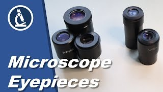 Microscope eypieces | Microscopy