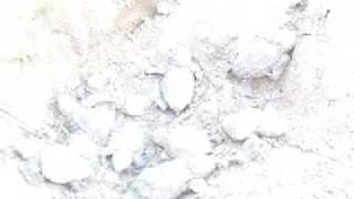 神奈川県葉山町の海岸に、2009年夏に産卵されたウミガメの卵。いつ孵化...
