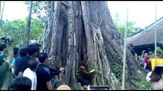 Video | Rắn nhập vào người ở làng Vạn Phúc HN 09 03 2013 | Ran nhap vao nguoi o lang Van Phuc HN 09 03 2013