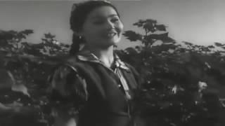 Görüş film, 1955