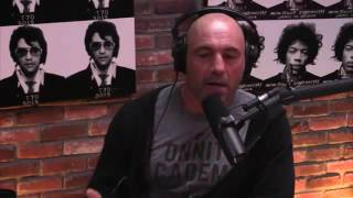 Joe Rogan | PIT BULLS are DANGEROUS