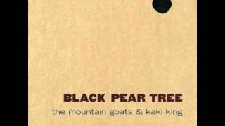 The Mountain Goats & Kaki King - Mosquito Repellent