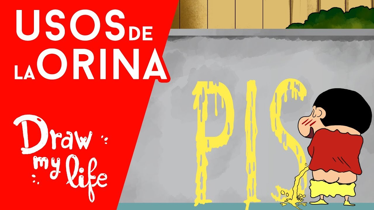 USOS ORIGINALES del PIS - Draw My Life