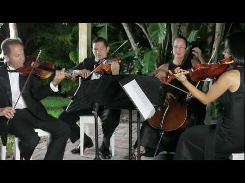 Stradivarius Chamber Ensemble - Wedding Promo Video