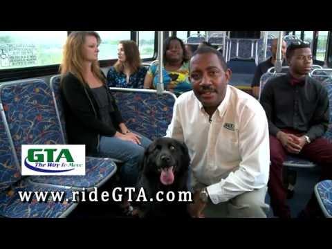 GTA Service Animals