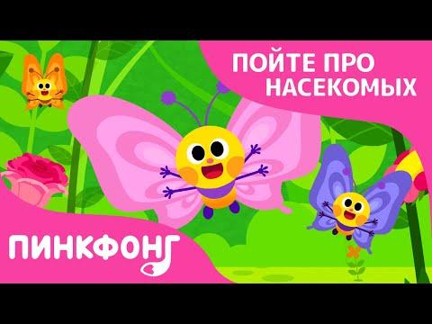 Порхающие бабочки   Песни про насекомых   Пинкфонг песни для детей