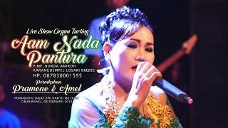 Download Lagu Kumpul Kebo (Tengdungan) Mimi Carini - Aam Nada Pantura Live Cibuniwangi [08-02-2019] mp3