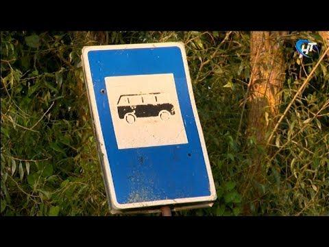 Деревню Ермолино с областным центром связал новый автобусный маршрут