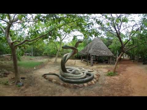 Adyar Eco Park - Tholkappia Poonga 360 VR Experience | Chase360
